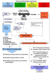Schema flux in succesiunea operatiilor tehnologice